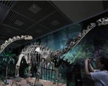 燃!侏罗纪世界真正的霸主亮相南京博物院(组图)