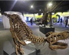 """恐龙实验室登陆南京 游客""""秒回""""侏罗纪(组图)"""