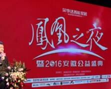 益起2016•凤凰之夜安徽公益盛典