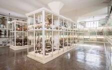 """天津博物馆中的""""神秘网红!100年前便震惊世界"""