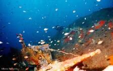 盘点希腊十大沉船潜水胜地 探寻最壮观海底奇景