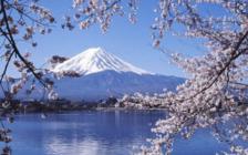 日媒:日本将迎10天黄金周假期 海内外旅游预约火爆