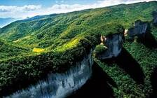 """""""国际森林日""""重庆130处森林旅游地免费开放"""