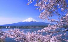 想避开人群玩的清新脱俗?来看这个日本人一生必住的地方吧!