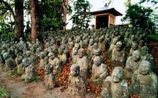 韩媒:萨德致161家韩国旅行社在中国没做成一笔生意