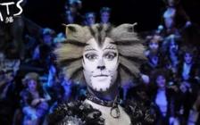 《恋爱的犀牛》《猫》上演 怀旧香港电影交响音乐会 | 一周演出资讯