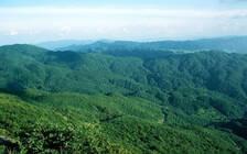 贵州推动森林旅游业 到2020年将建成300个森林旅游景区