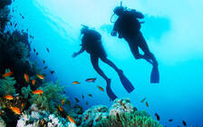 旅游平台盘查境外游产品安全 涉及潜水冲浪产品