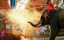 泰国计划对中印实施免签  拟今年11月1日生效