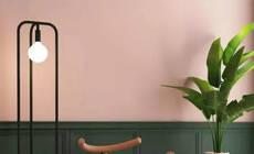 《延禧攻略》的莫兰迪色火了,用在家居配色真美