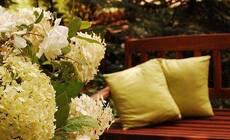 想要一个小院子,看门前花开花落一辈子