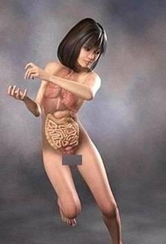 日本3d美女医学人体解剖图 凤凰网