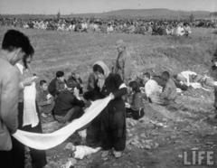 朝鲜战争中的朝鲜俘虏:挖坑埋同伴后表情镇定