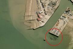 巨型螃蟹出现在英国码头