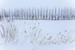 """""""华夏东极""""抚远的雪景"""