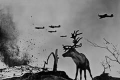 苏联摄影师拍摄的二战