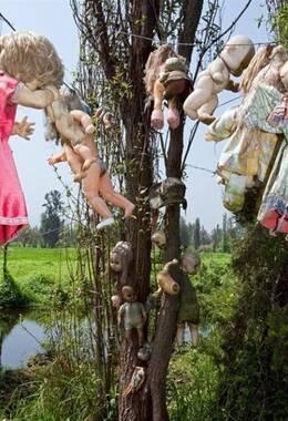 墨西哥神秘娃娃岛令人毛骨悚然