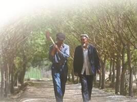 新疆叶城艾尼瓦尔父子两代守墓人:看守烈士陵园是家族使命