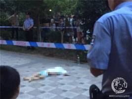 内江一5岁男孩被独自留在家中,从23楼坠亡