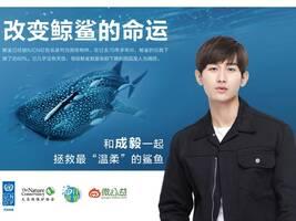 演员成毅拍摄公益广告 为保护鲸鲨发声(图)