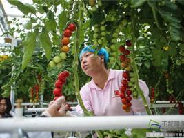 主业反哺农业带动农民增收 北京城建集团助力精准脱贫攻坚战
