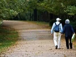 益调查:我们的养老问题究竟该依靠谁?