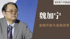 魏加宁:金融开放与金融改革