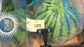 日本西瓜200人民币一个?这背后不为人知的是…… | 地球知识局