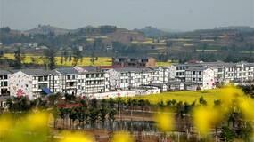 土地被征收,房屋及场地的租赁合同就该被解除吗?