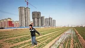 郑永年:土地问题才是农村社会秩序建设的核心问题