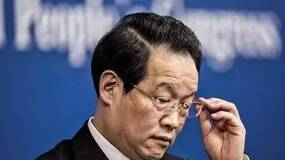 老徐时评:假如项俊波报考了中文系……