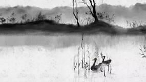 【郑风】君子的秩序维度|毛寿龙