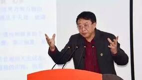 李从国:中国经济气血紊乱内外失调的原因及对策