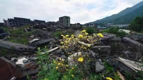 汶川地震的8句墓志铭|荐文