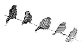 生命有三种形态:子弹、风筝、鸟 (黑白先生)