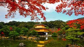姜建强:在日本,极致的性爱也无法救赎孤独
