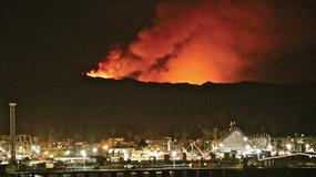 """当加州被世纪大火""""吞噬"""",我们该记住这只誓死不愿离开火场的英雄狗子"""