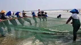 中国90%近海已无鱼可捕,可我们看不到海洋的眼泪