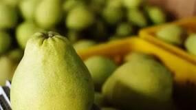 挑食   这个深秋,How are 柚?