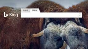 微软Bing:全球化浪潮下的搜索选择