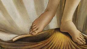 你的第二根脚趾最长?