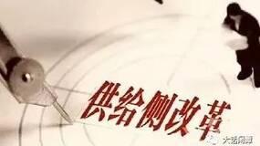 """王长江:政治领域更需要""""供给侧改革"""""""