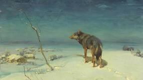 梁文道 : 狼的某些天性比人类更高贵