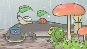 你的蛙去哪旅行了?知道真相的我眼泪流下来