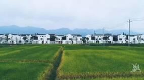 设计家   2018年最值得看的乡村建筑