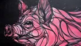 一只特立独行的猪..(黑白先生)