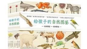 荐书丨收藏版自然图鉴,带孩子领略大自然之美