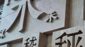 论汉语的险境和诡谬