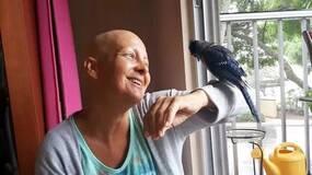 世上最暖报恩!3年前她救了一只鸟,患癌后鸟儿竟救活姑娘