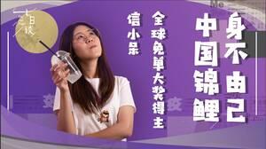 信小呆:成为中国锦鲤女孩的270天